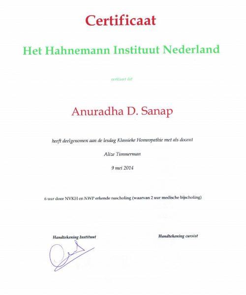Seminar at Hahnemann Institute Netherlands